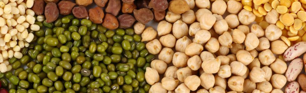 legumbres-nutrisalia